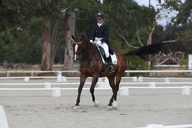 SI_Festival_of_Dressage_300115_Level_9_SICF_0470