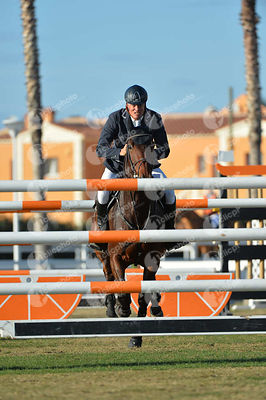 Meyer Hilmar (GER) and SALTO DE FEE