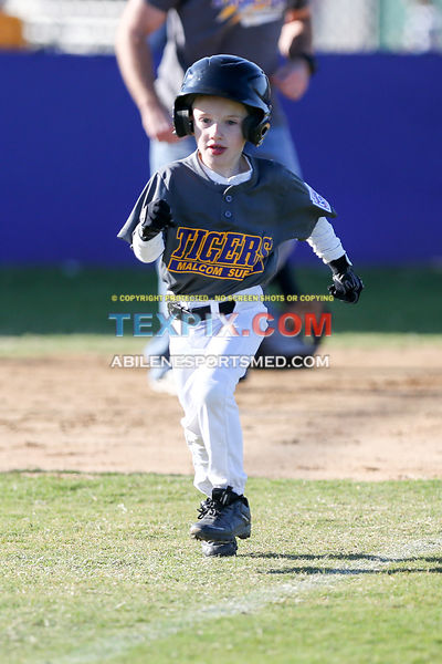 04-08-17_BB_LL_Wylie_Rookie_Wildcats_v_Tigers_TS-467
