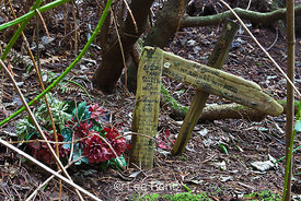 Sad Memorial for a Child in Seattle Arboretum