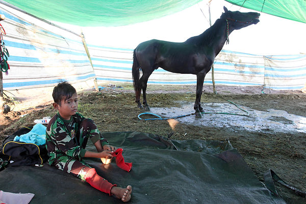 Egy, 8 years old wakes up in his tent in the camp on the racetrack. He suffers from ENT infection and a fever but his father nonetheless require him to run.