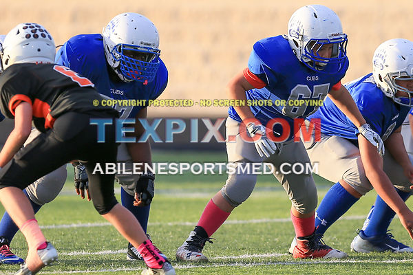 10-29-16_FB_White_Settlement_v_Aledo-Mooney_Hays_4062