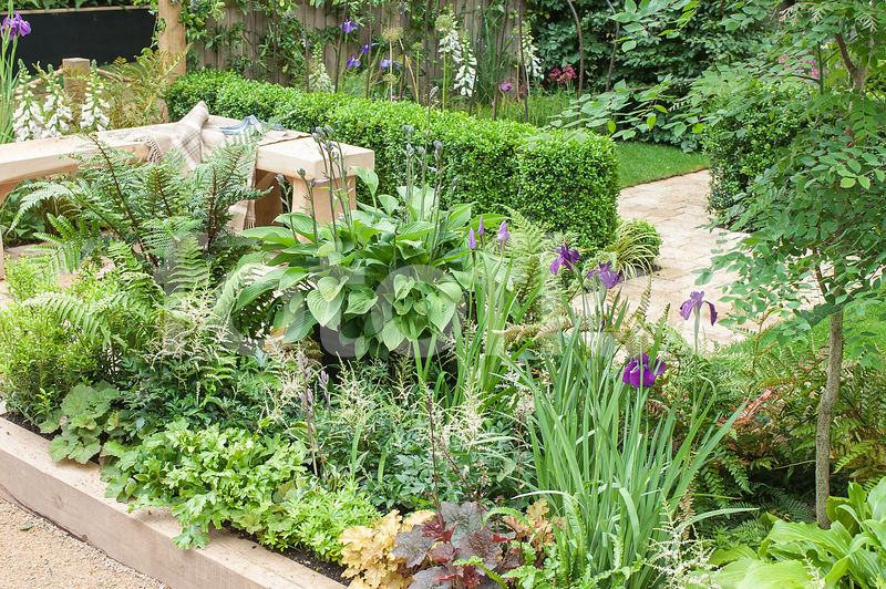 Photo de Petit jardin de ville cloisonné - fotoflor - grand choix de ...
