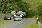 Horse drawn caravan on the road heading to Appleby horse fair. On A683 betwen Sedbergh and Kirkby Stephen, being overtaken by cars