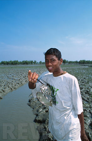 Bangladesh waterlife