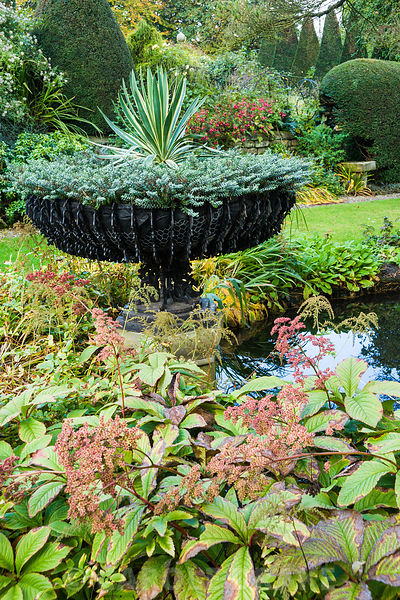 Pond in the Old Orchard with wrought metal basket urn planted with hebe and a variegated yucca surrounded by rodgersias, hostas, primulas and filipendula.