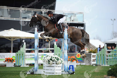 Cadman Nicholas Martyn, (Gbr) and TOP LIMIT