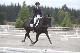 SI_Festival_of_Dressage_300115_Level_7_0290