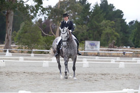SI_Festival_of_Dressage_300115_Level_6_NCF_0171