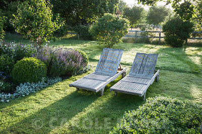 A pair of wooden sun loungers besdie a bed of lavender, clipped box, Stachys byzantina 'Silver Carpet', white lychnis and roses. Westbrook House, West Bradley, Somerset, UK