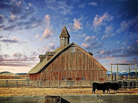 Barn and cows near Baker, Oregon