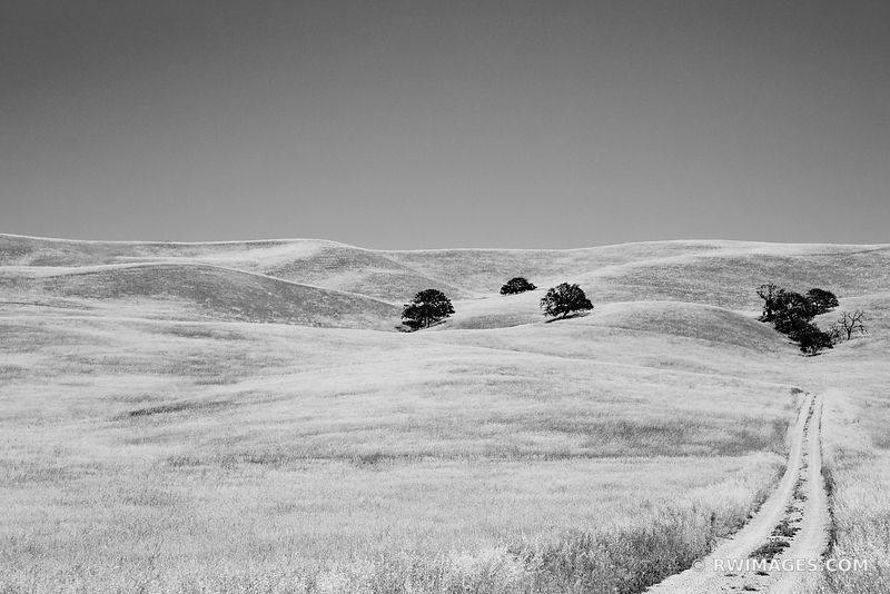 GOLDEN HILLS CENTRAL CALIFORNIA WINE COUNTRY BLACK AND WHITE
