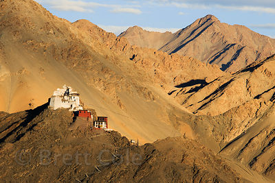 View of Namgyal Tsemo Gompa from the Shanti Stupa, Leh, Ladakh, India