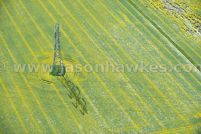 Aerial view of pylon in field of rape seed