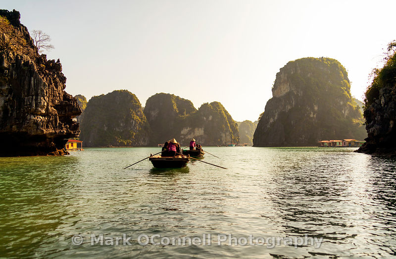 Rowing boats in Halong Bay Vietnam
