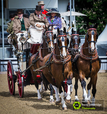 Royal_Windsor_Horse_Show_2017_010