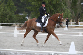 SI_Festival_of_Dressage_300115_Level_7_0268