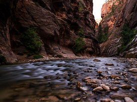 Zion_National_Park_2012_163