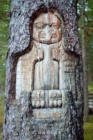 Inuit tree carving in Bartlett Cove, Glacier Bay National Park.