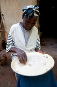 Woman sorting out grains of rice in preperation to making a meal, Kenya.