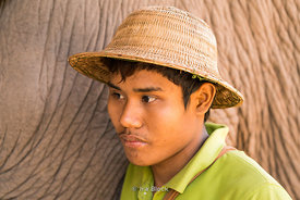 A worker with elephants at the Green Hill Valley Elephant camp in Magway Village near Bagan, Myanmar.