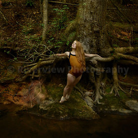 Haley w/Tree Roots