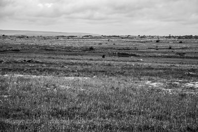 HR-Burren-Ireland2014-7965