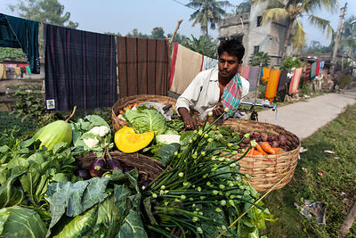 A wonderful assortment of vegetables for sale on a bicycle cart in Chingrihata, Kolkata, India.