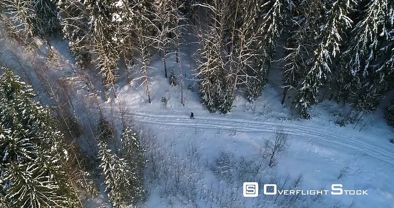 Man Walking a Snowy Forest, 4k Aerial View Around a Young Boy, Hiking Between Frozen Trees, Freezing Cold Winter Day, Sipoonkorpi National Park, Uusimaa, Finland
