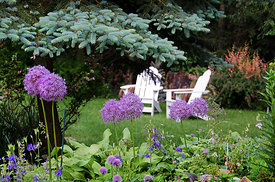 Adirondack Chairs Connecticut Garden