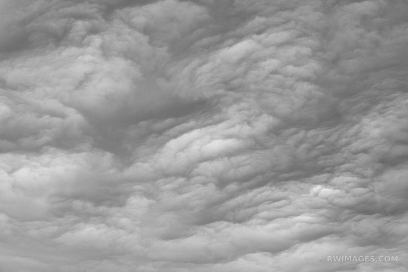 STORMY SKIES ACADIA NATIONAL PARK MAINE BLACK AND WHITE
