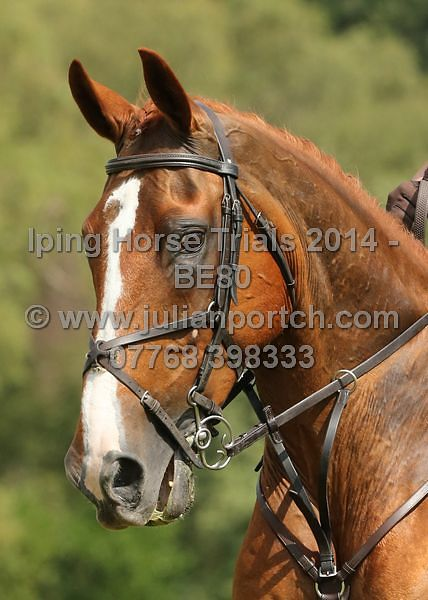 Iping Horse Trials July 2014 - BE80  photos