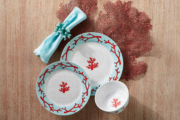 plate bowl collection with napkin and coral
