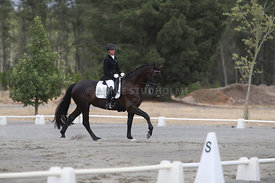 SI_Festival_of_Dressage_310115_Level_1_Champ_0696