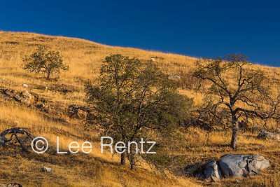 California Foothills photos