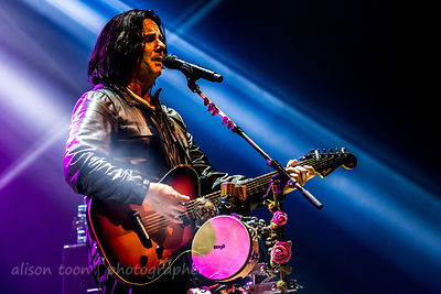 Steve Hogarth, vocals, Marillion, Wolves, 2015
