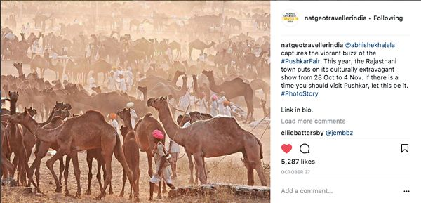 Nat Geo India Instagram Page, Pushkar Story, Oct 27 2017  photos