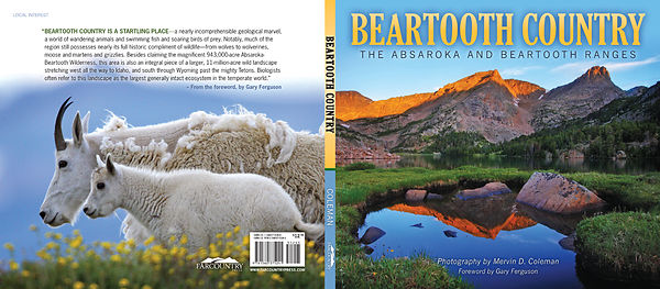 Beartooth Country