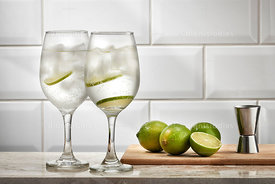 Dink Gin and Tonic