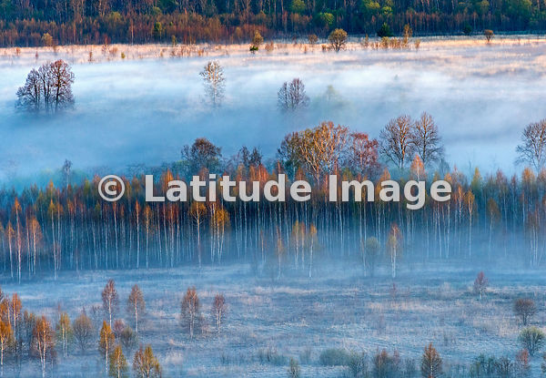 Flight over Tver Region, Russia. Morning fog.