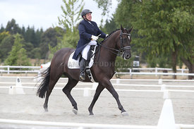 SI_Festival_of_Dressage_300115_Level_7_0272