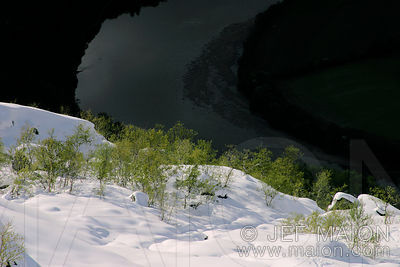 Green birch trees on a snow slope above a river