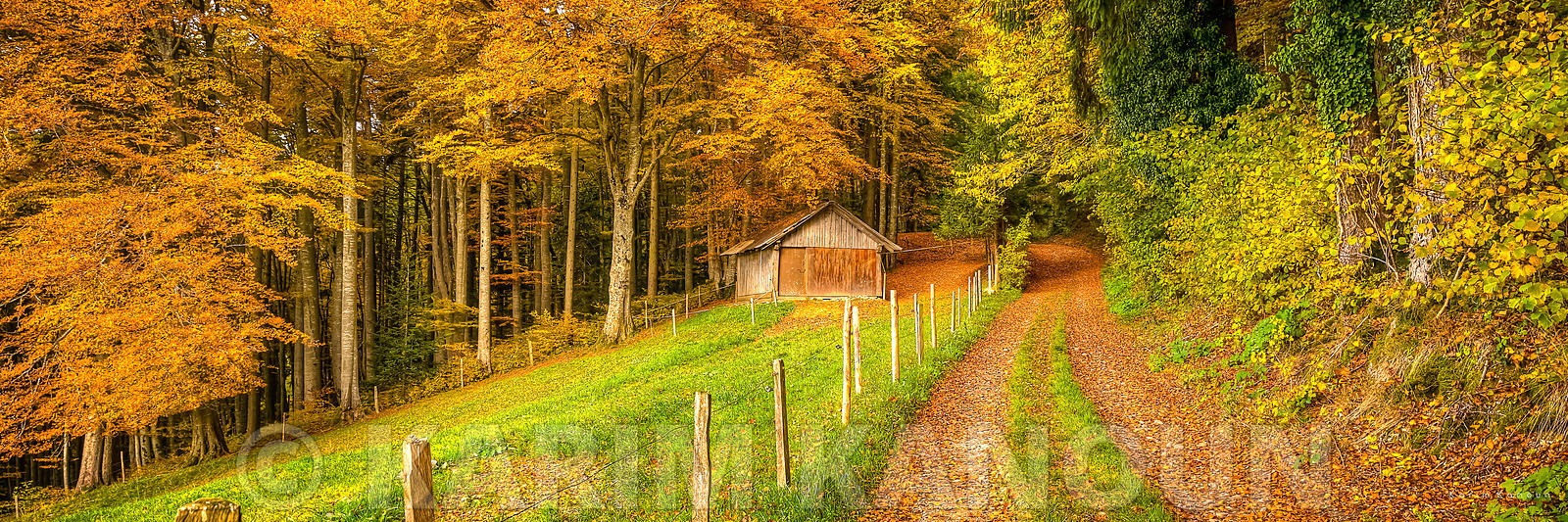 Panorama - Autum path to an abandoned hut