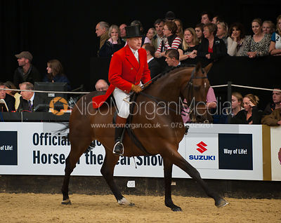 HOYS - Show Hunter Championship photos