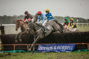 RAH Point to Point 27 Jan 18 photos