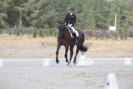 SI_Festival_of_Dressage_310115_Level_1_Champ_0693