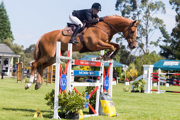 First Competition Excel/NRM NZ Premier Horse Championship photos