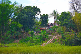Steps_up_to_a_Mekong_village