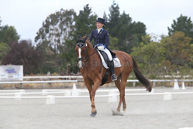 SI_Festival_of_Dressage_310115_Level_8_MFS_1146