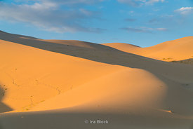 "Sand dunes in the Khongoryn Els in Gobi Gurvansaikhan National Park in southern Mongolia.  Khongoryn Els also called Duut Mankhan is popularly known as the ""Singing Sands""."